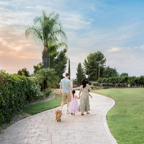 Beautiful Wine Country Family Photo Session in Temecula